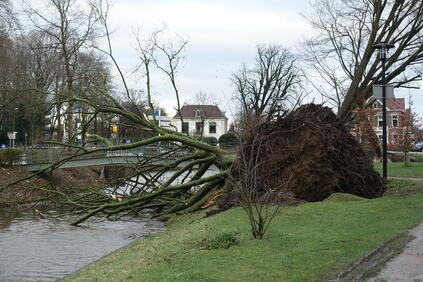 Швейцарски експерти определиха ураганната буря като най-скъпоструващото бедствие в Европа