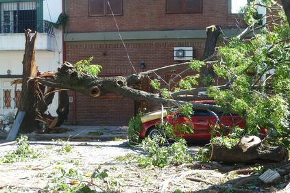 Основните щети са в северозападна Флорида и южната част на