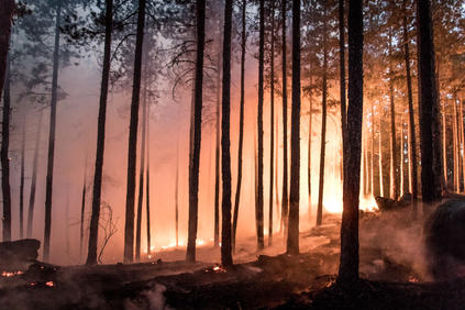 Моделирането на огневите рискове е направено с водещи застрахователи и