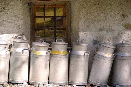 Антибиотици и ешерихия коли в млечните продукти от пазара Сирена