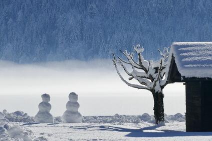 Снимка: Студът качва декемврийските сметки за ток поне с 10